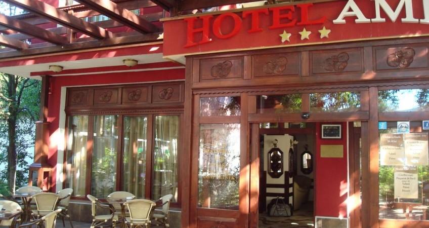 Galerie Hotel Ami Băile Felix