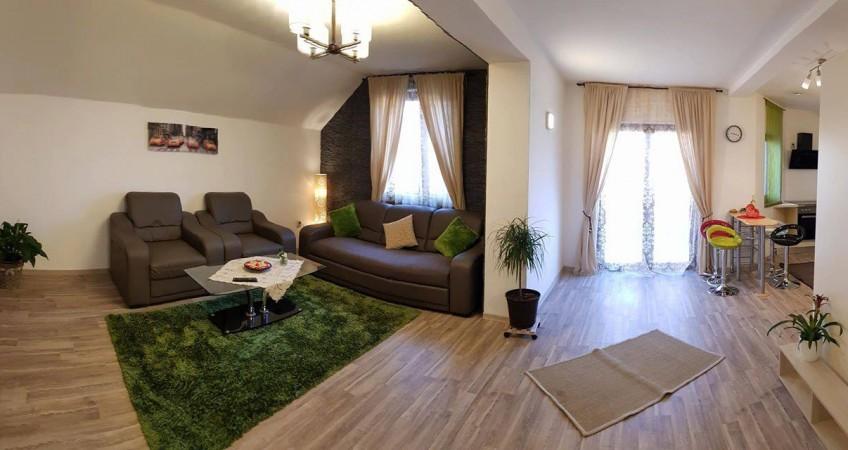 Cazare Apartament Cristina House