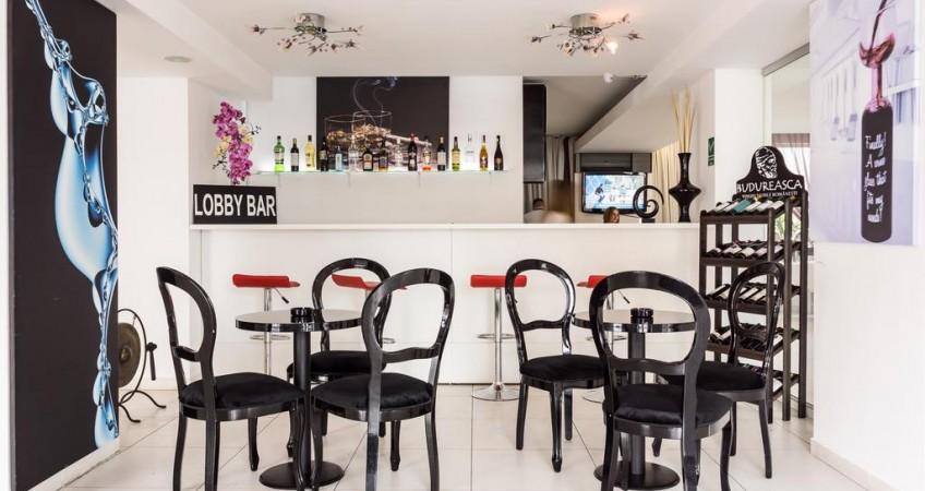 Cazare Boutique Hotel Alex Si George Cluj-Napoca
