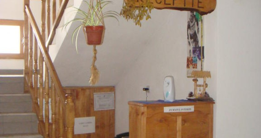Imagine Garofita Pietrei Craiului Zarnesti
